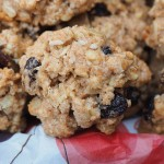 Low cholesterol cookies snacks ideas